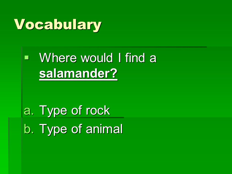Vocabulary Where would I find a salamander Type of rock