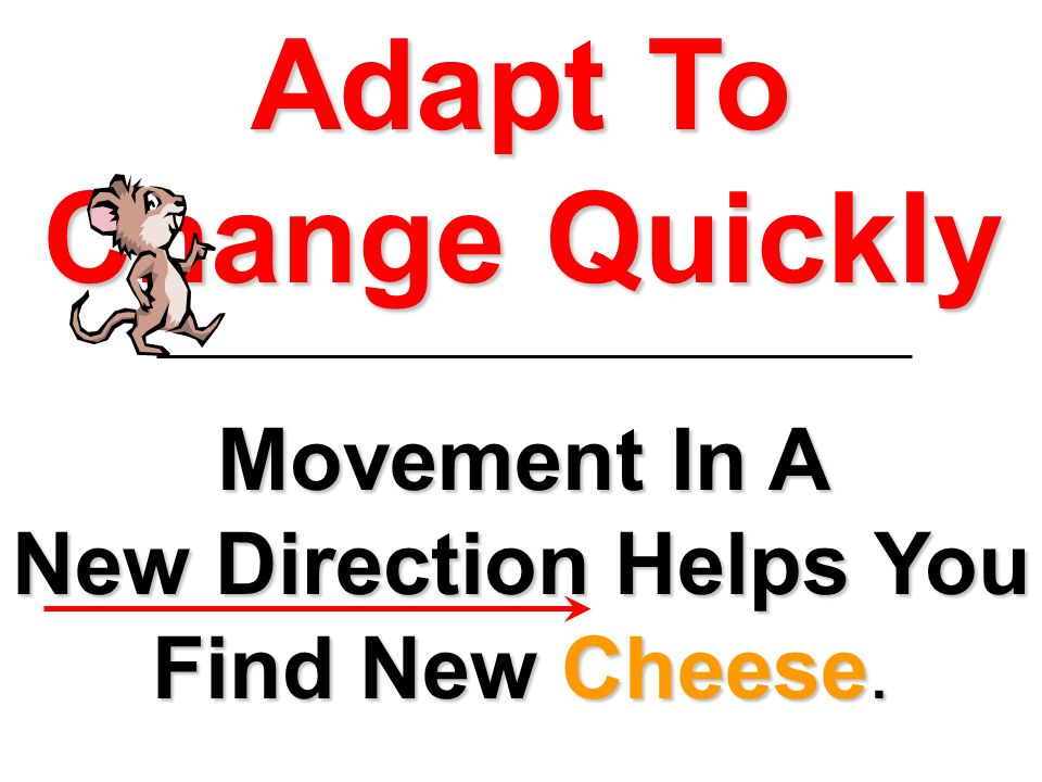 Adapt To Change Quickly