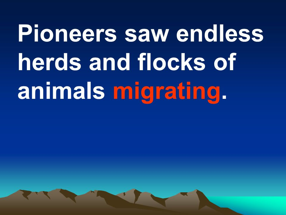 Pioneers saw endless herds and flocks of animals migrating.