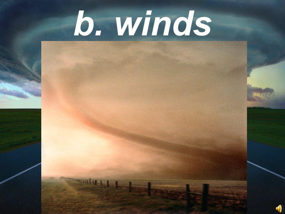 b. winds
