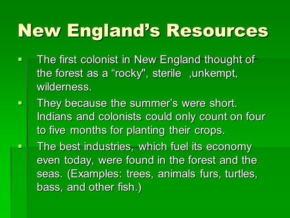 New England's Resources