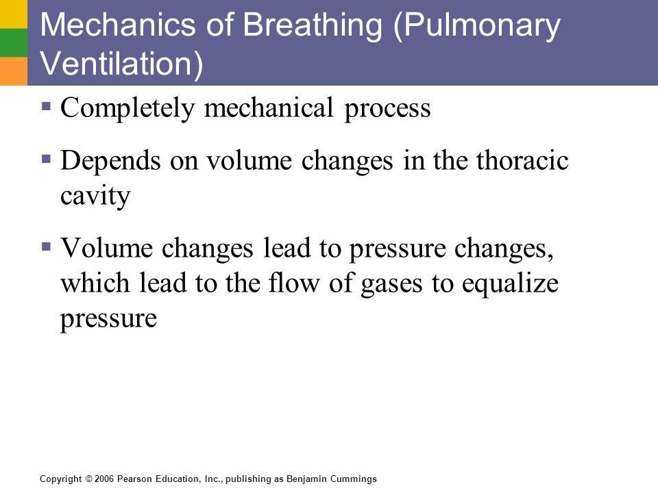 Mechanics of Breathing (Pulmonary Ventilation)