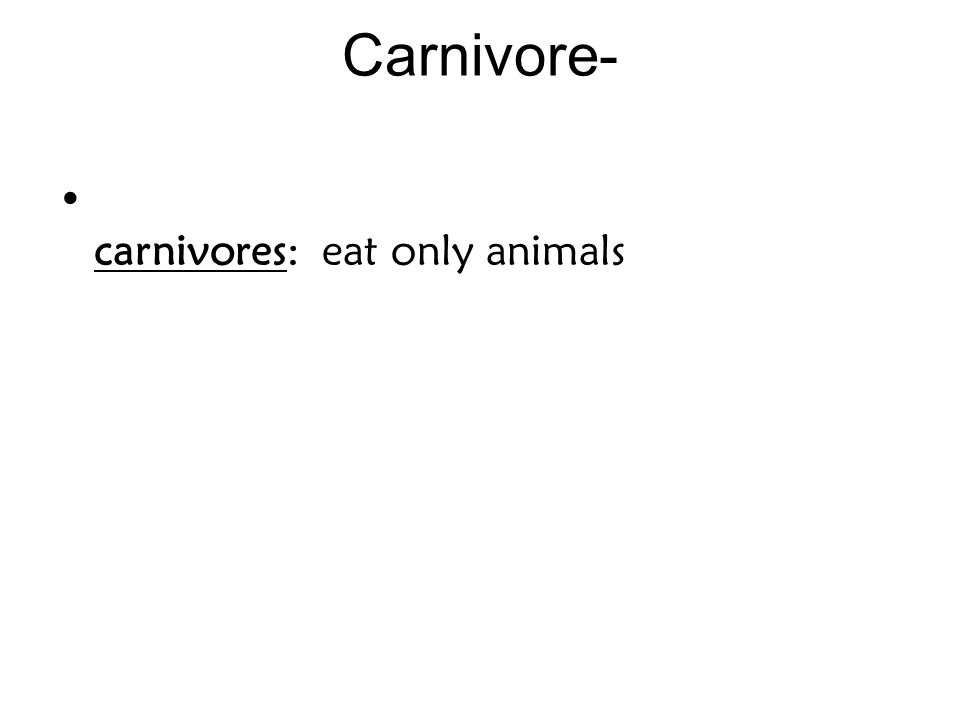 Carnivore- carnivores: eat only animals