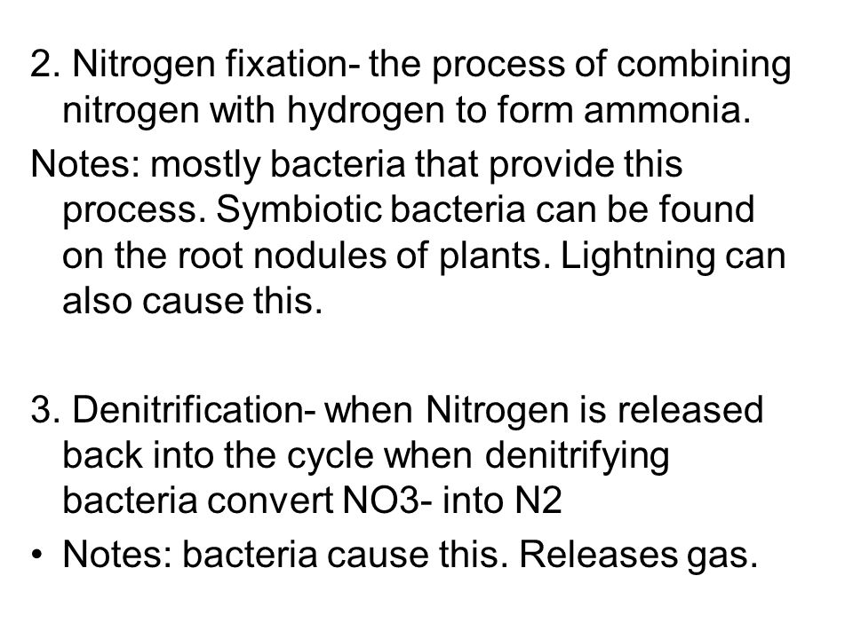 2. Nitrogen fixation- the process of combining nitrogen with hydrogen to form ammonia.