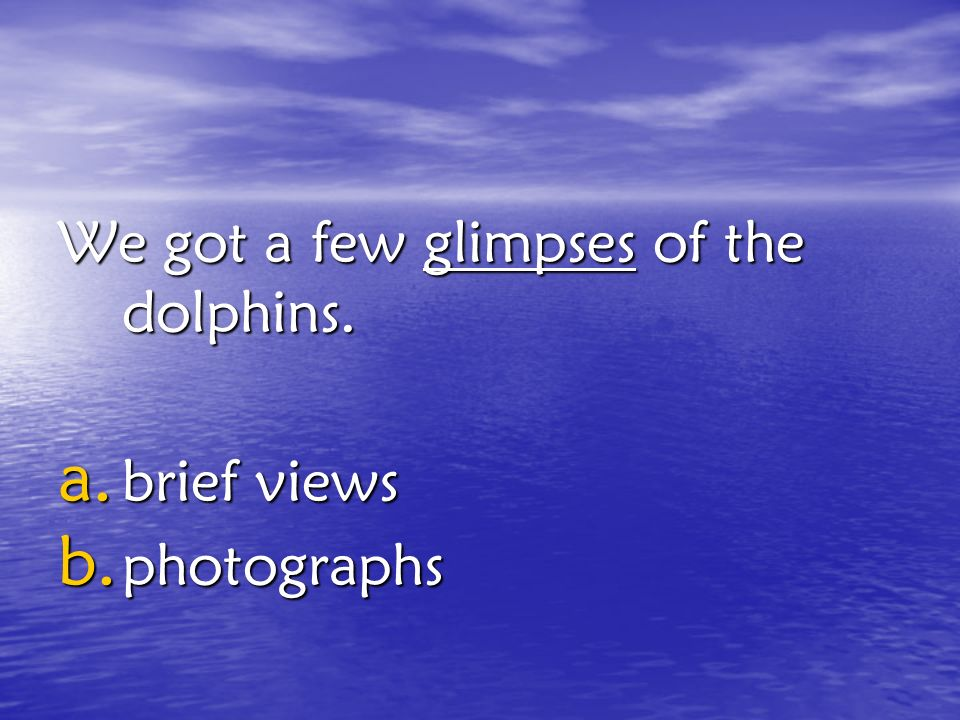We got a few glimpses of the dolphins.