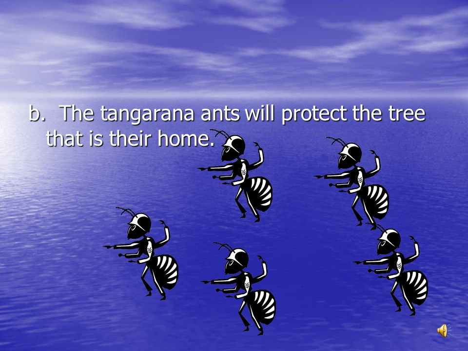 b. The tangarana ants will protect the tree that is their home.