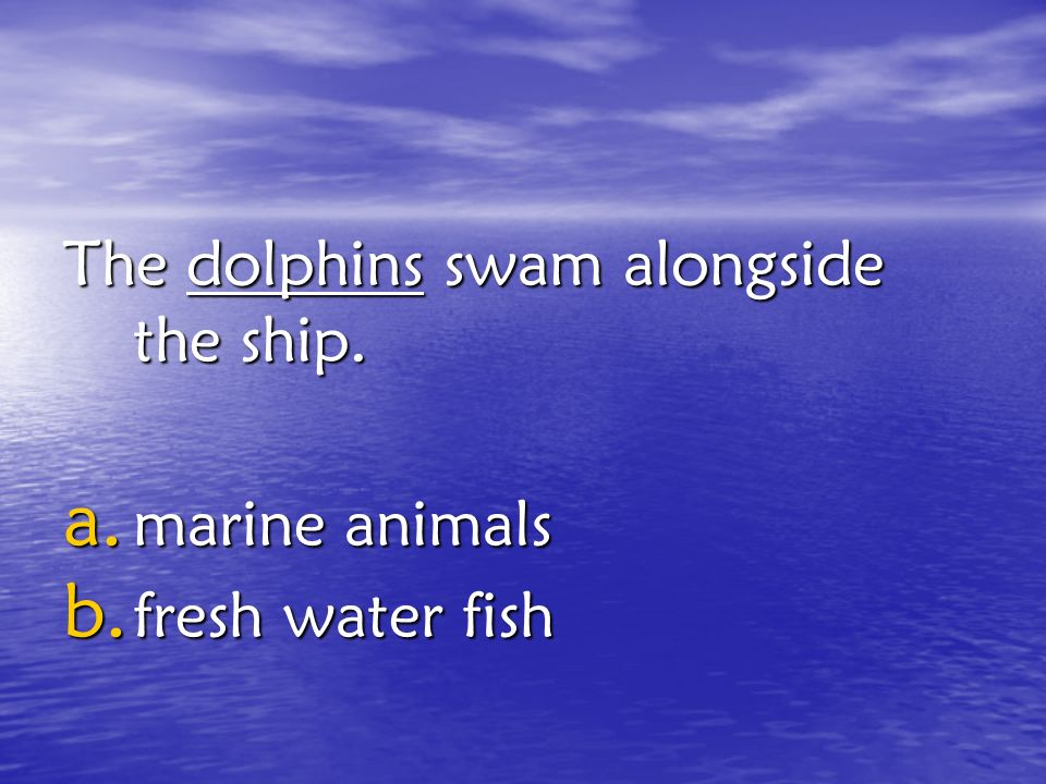 The dolphins swam alongside the ship.