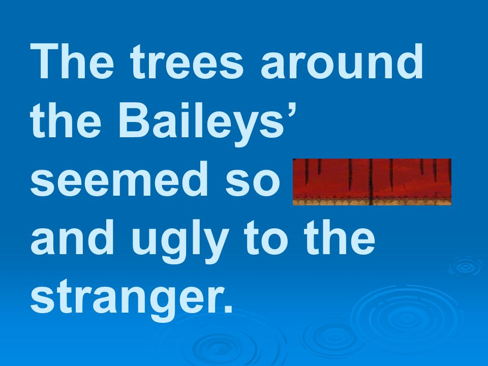 The trees around the Baileys' seemed so drab and ugly to the stranger.