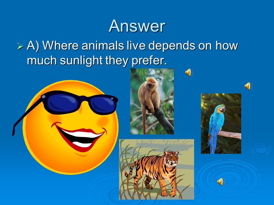 Answer A) Where animals live depends on how much sunlight they prefer.