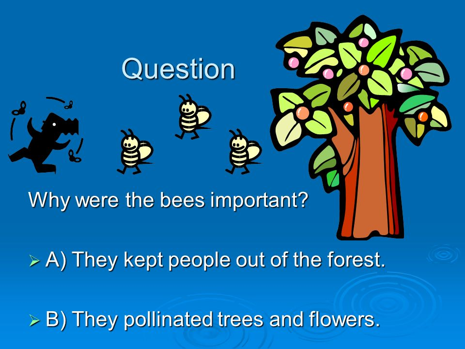 Question Why were the bees important