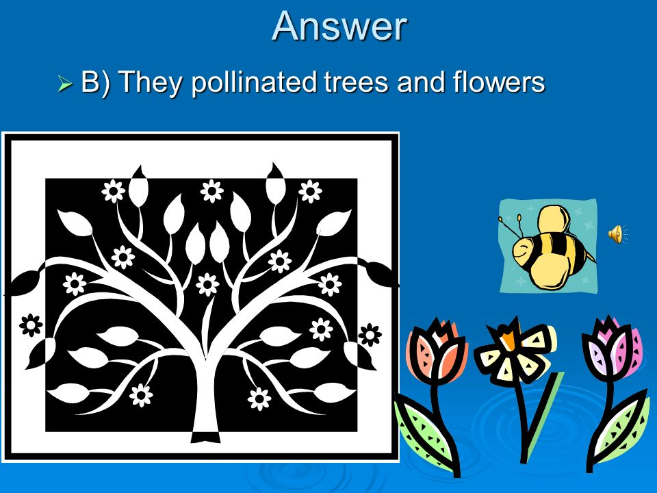 Answer B) They pollinated trees and flowers