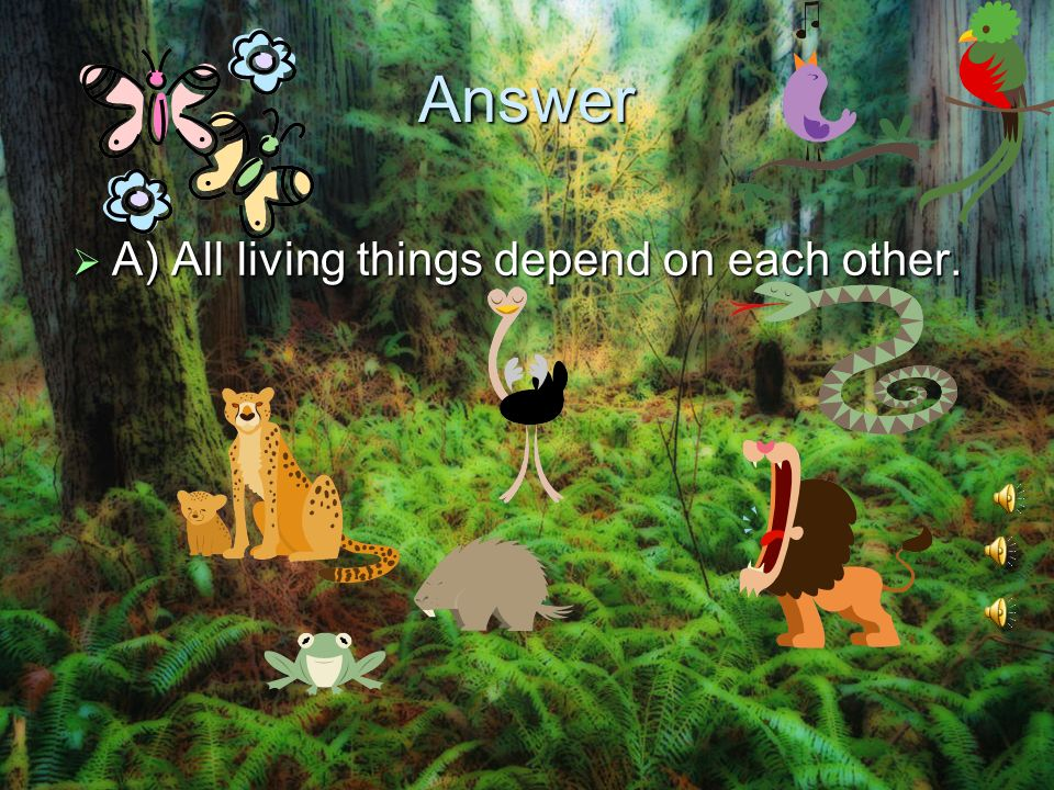 Answer A) All living things depend on each other.