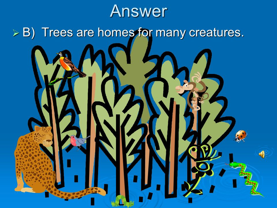 Answer B) Trees are homes for many creatures.
