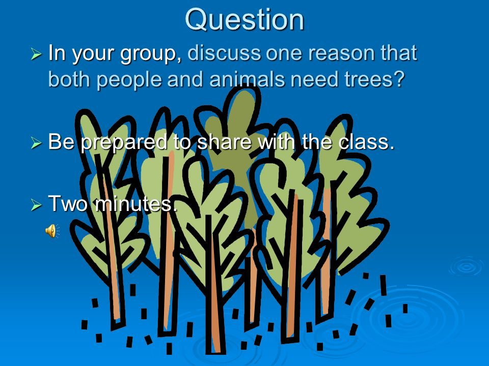 Question In your group, discuss one reason that both people and animals need trees Be prepared to share with the class.