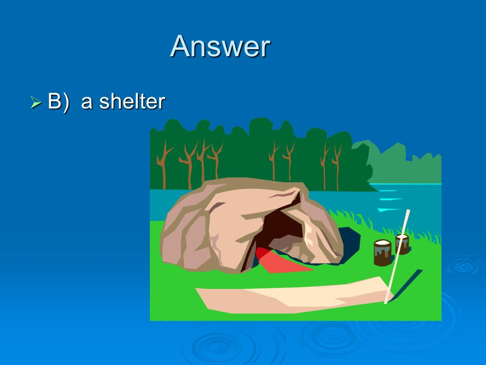 Answer B) a shelter
