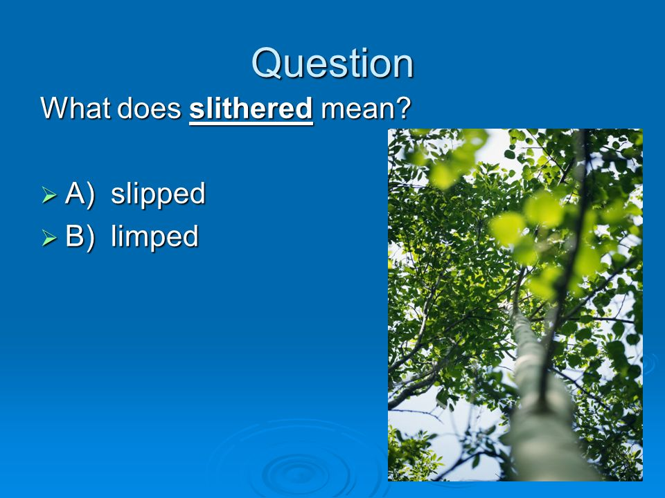 Question What does slithered mean A) slipped B) limped