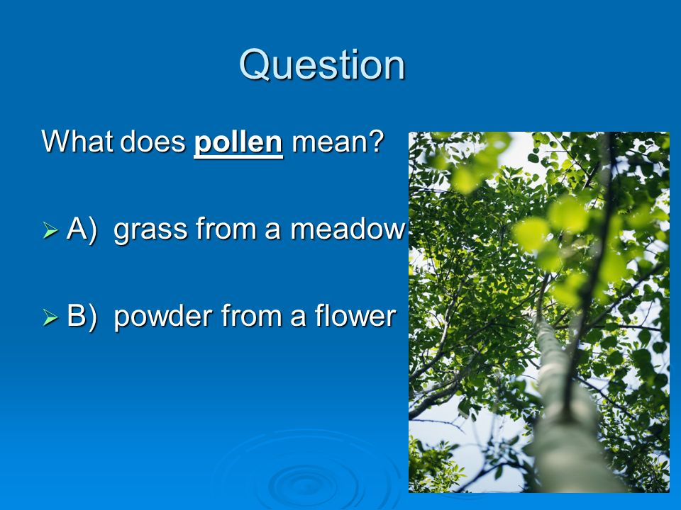 Question What does pollen mean A) grass from a meadow