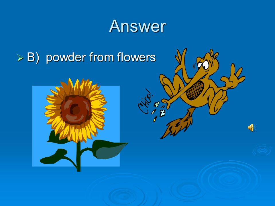 Answer B) powder from flowers