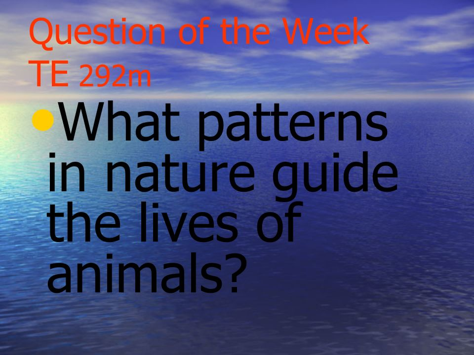 Question of the Week TE 292m