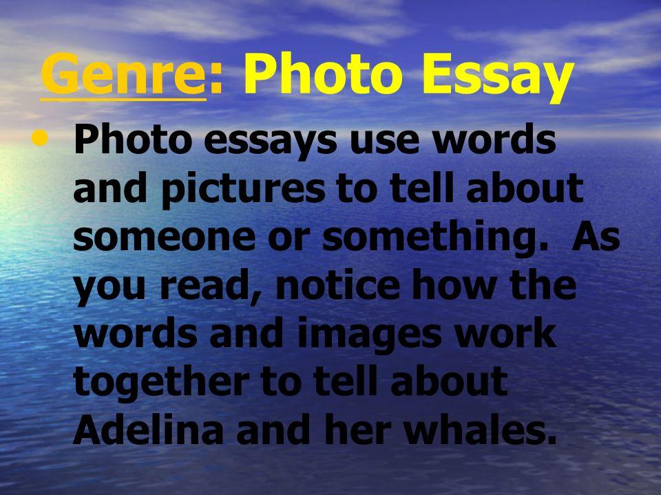 Genre: Photo Essay