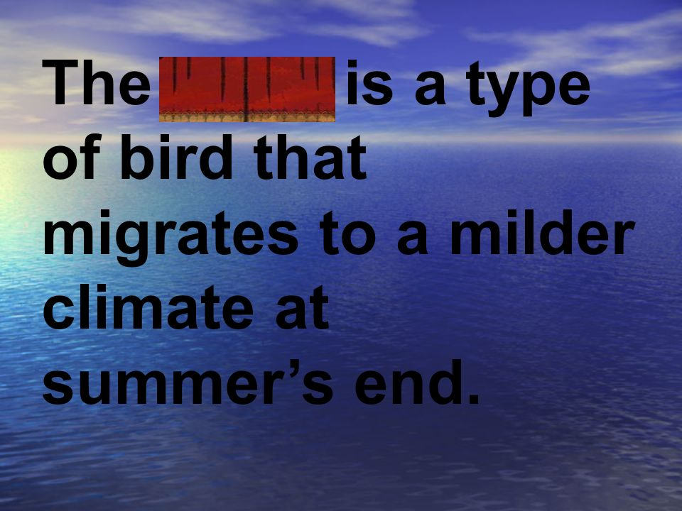 The swan is a type of bird that migrates to a milder climate at summer's end.