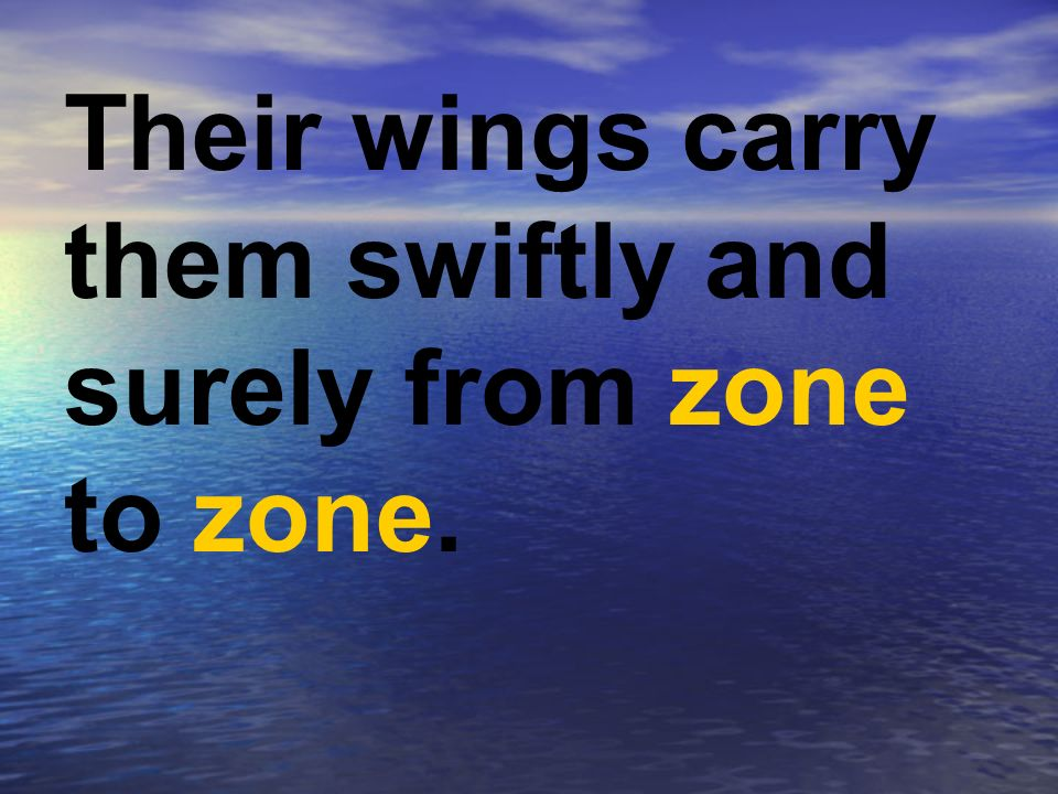 Their wings carry them swiftly and surely from zone to zone.