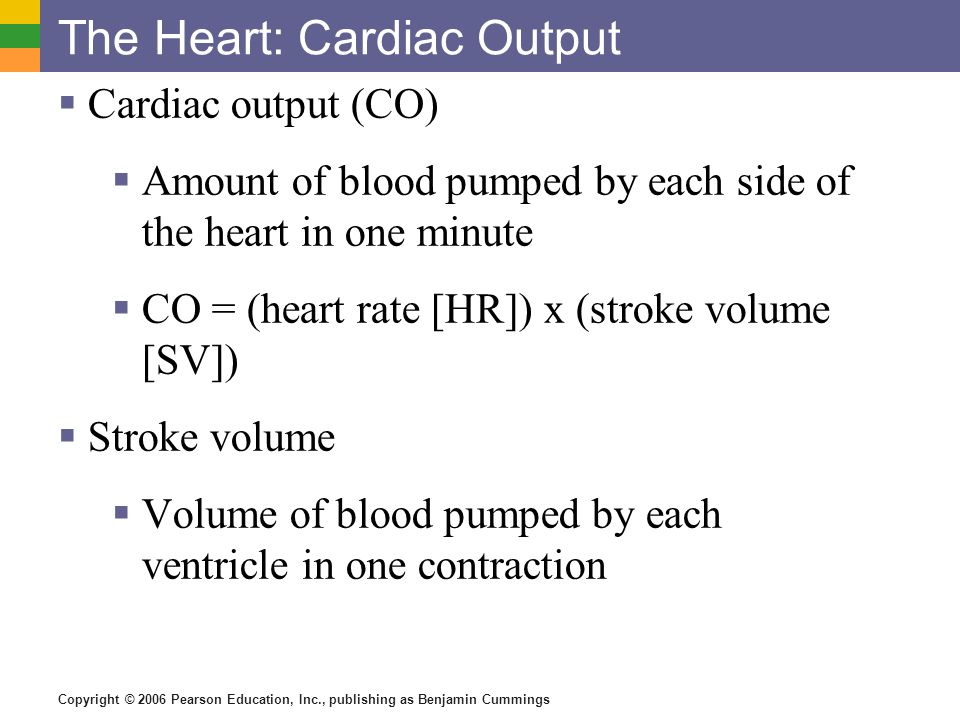 The Heart: Cardiac Output