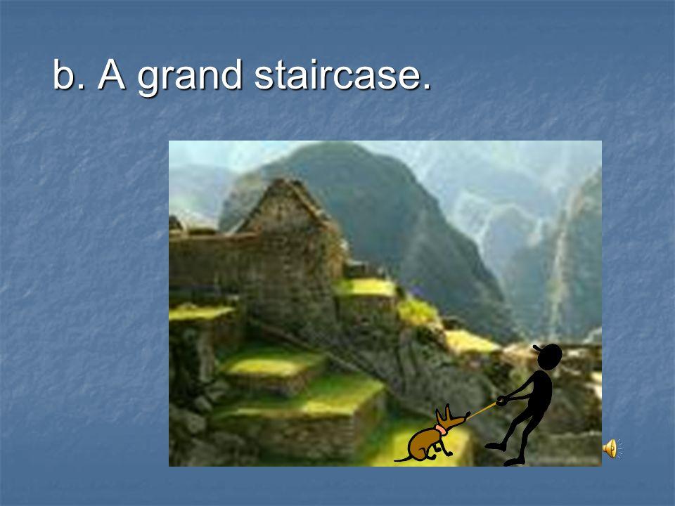 b. A grand staircase.