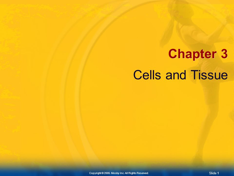Chapter 3 Cells and Tissue