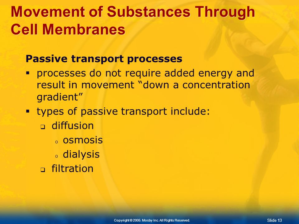 Movement of Substances Through Cell Membranes
