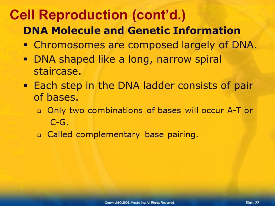 Cell Reproduction (cont'd.)