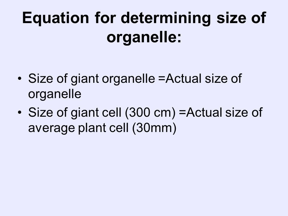 Equation for determining size of organelle: