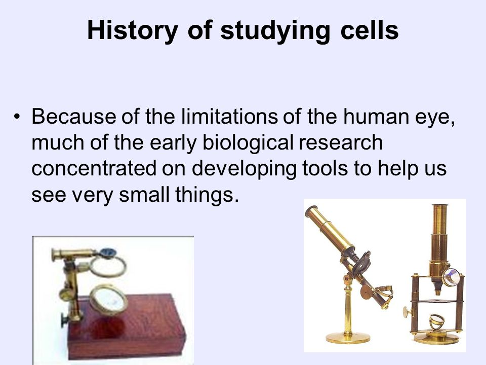 History of studying cells