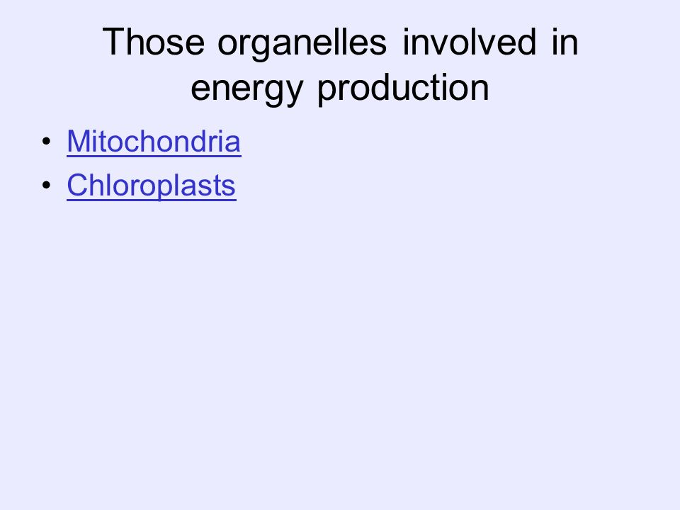 Those organelles involved in energy production