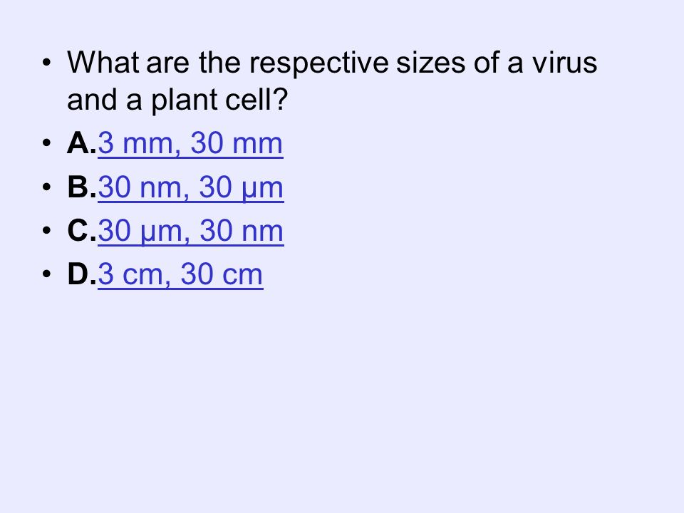What are the respective sizes of a virus and a plant cell