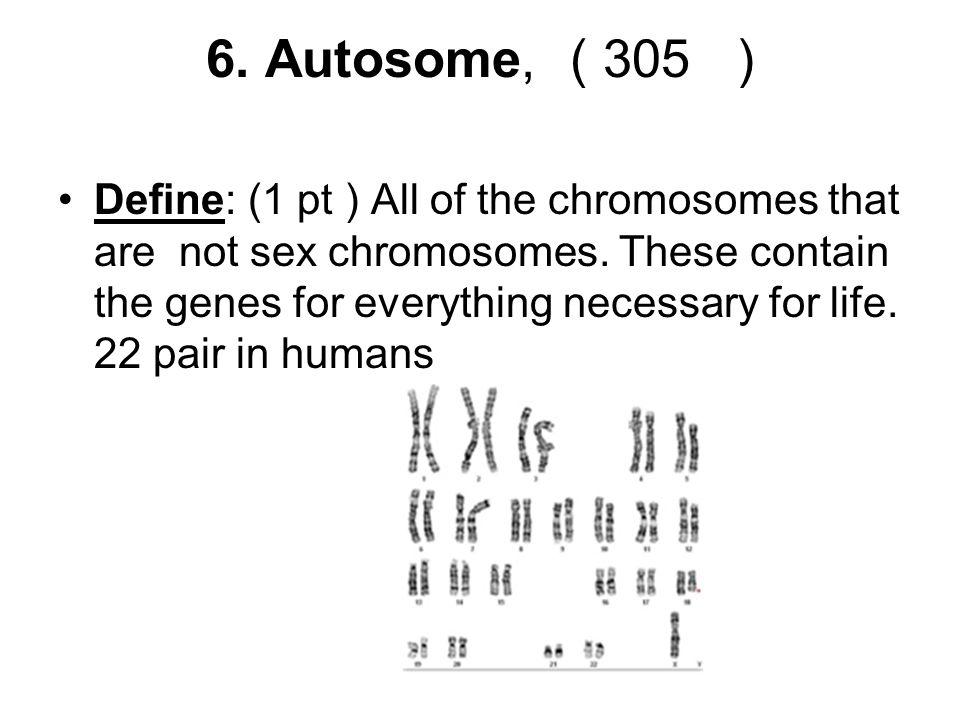 6. Autosome, ( 305 )