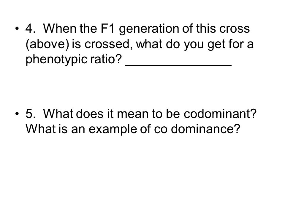 4. When the F1 generation of this cross (above) is crossed, what do you get for a phenotypic ratio _______________