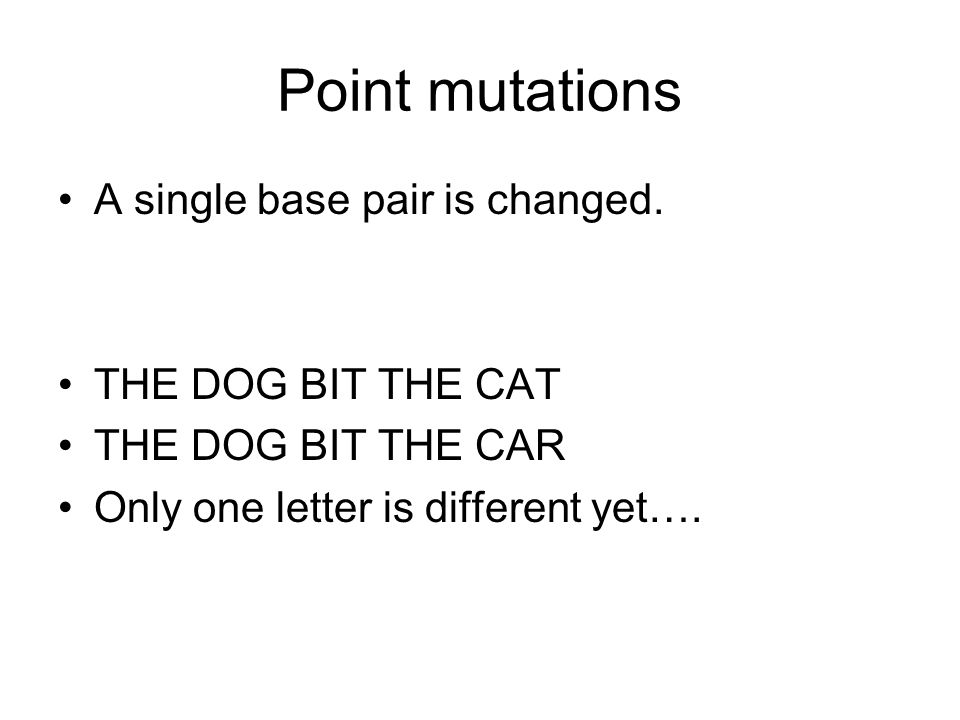 Point mutations A single base pair is changed. THE DOG BIT THE CAT