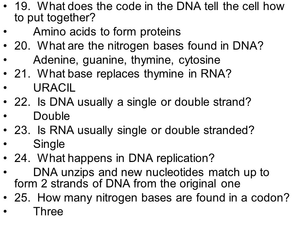 19. What does the code in the DNA tell the cell how to put together