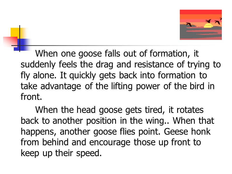 When one goose falls out of formation, it suddenly feels the drag and resistance of trying to fly alone. It quickly gets back into formation to take advantage of the lifting power of the bird in front.
