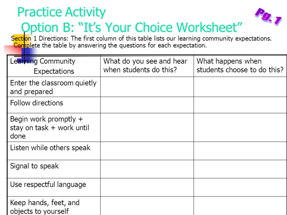 Practice Activity Option B: It's Your Choice Worksheet