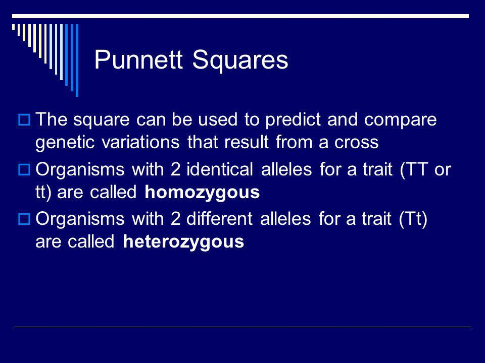 Punnett Squares The square can be used to predict and compare genetic variations that result from a cross.