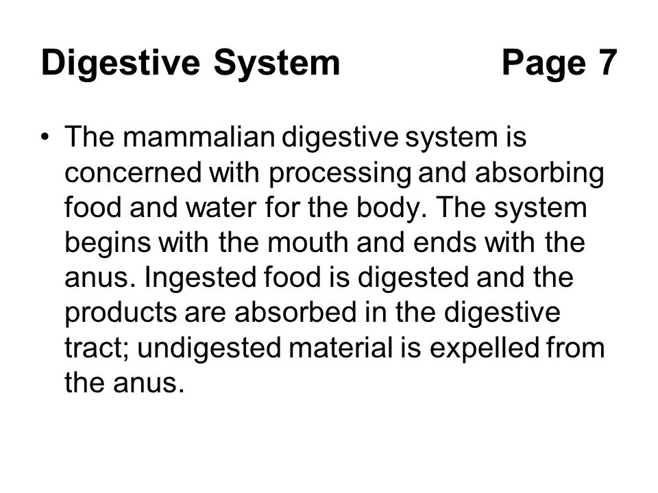 Digestive System Page 7