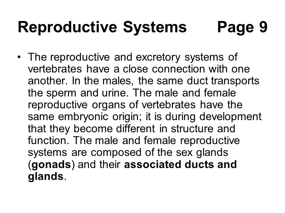 Reproductive Systems Page 9