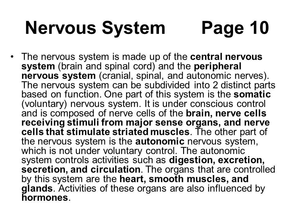 Nervous System Page 10