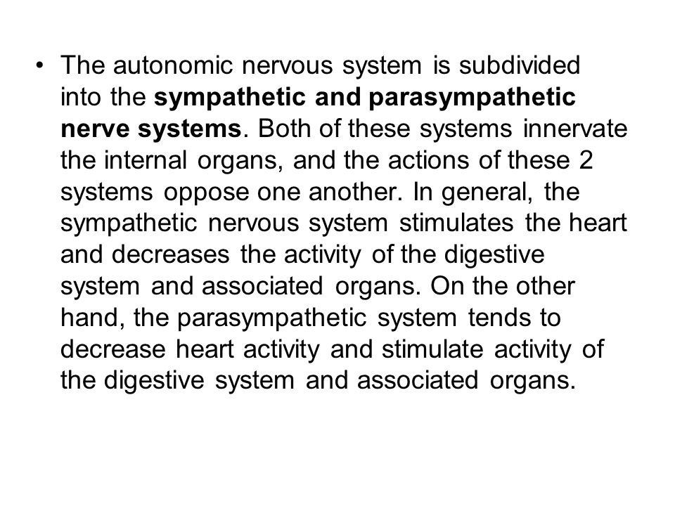 The autonomic nervous system is subdivided into the sympathetic and parasympathetic nerve systems.