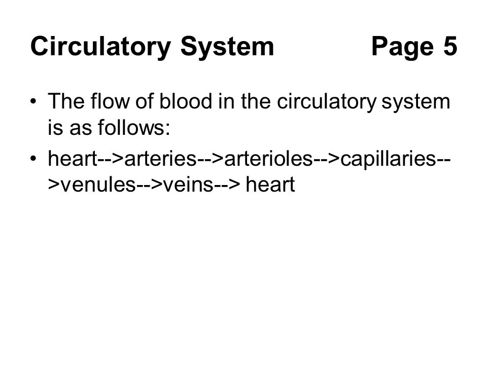 Circulatory System Page 5