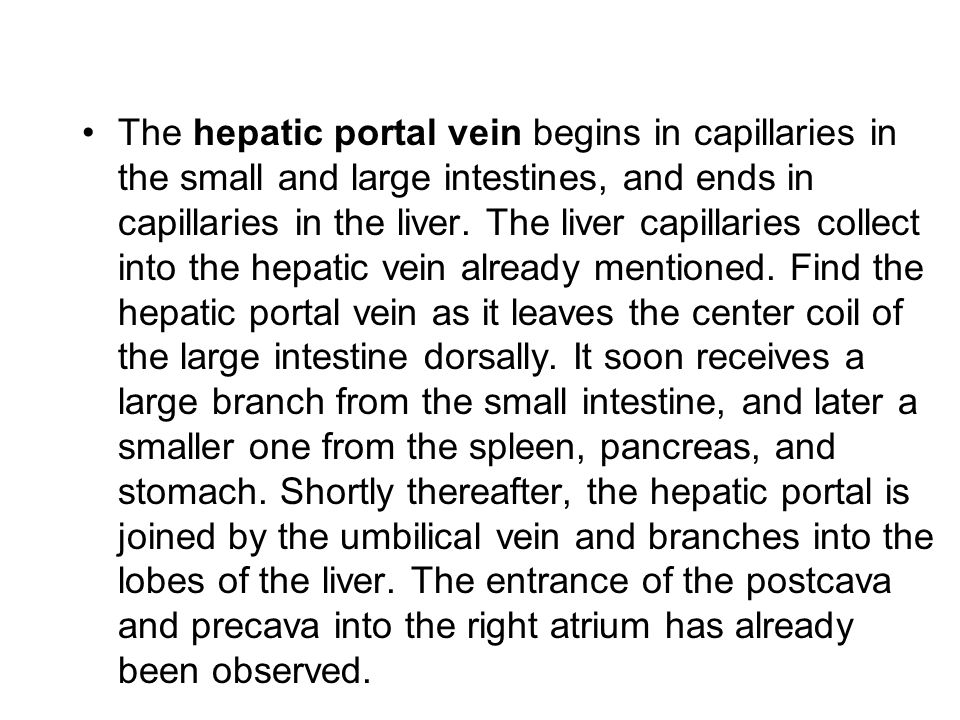 The hepatic portal vein begins in capillaries in the small and large intestines, and ends in capillaries in the liver.
