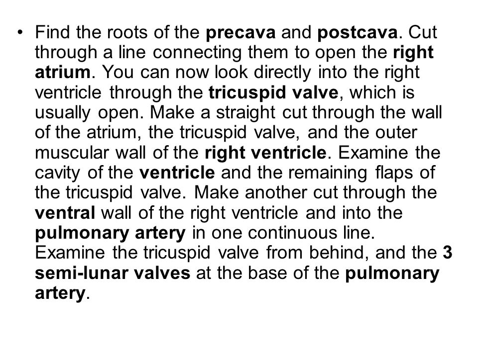 Find the roots of the precava and postcava