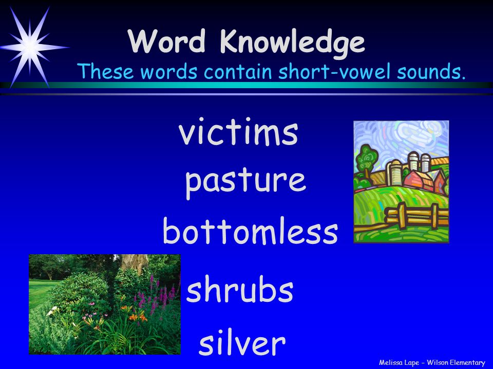 These words contain short-vowel sounds.